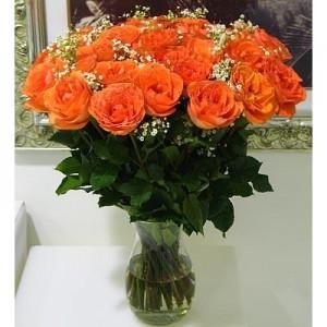 24 Orange Roses