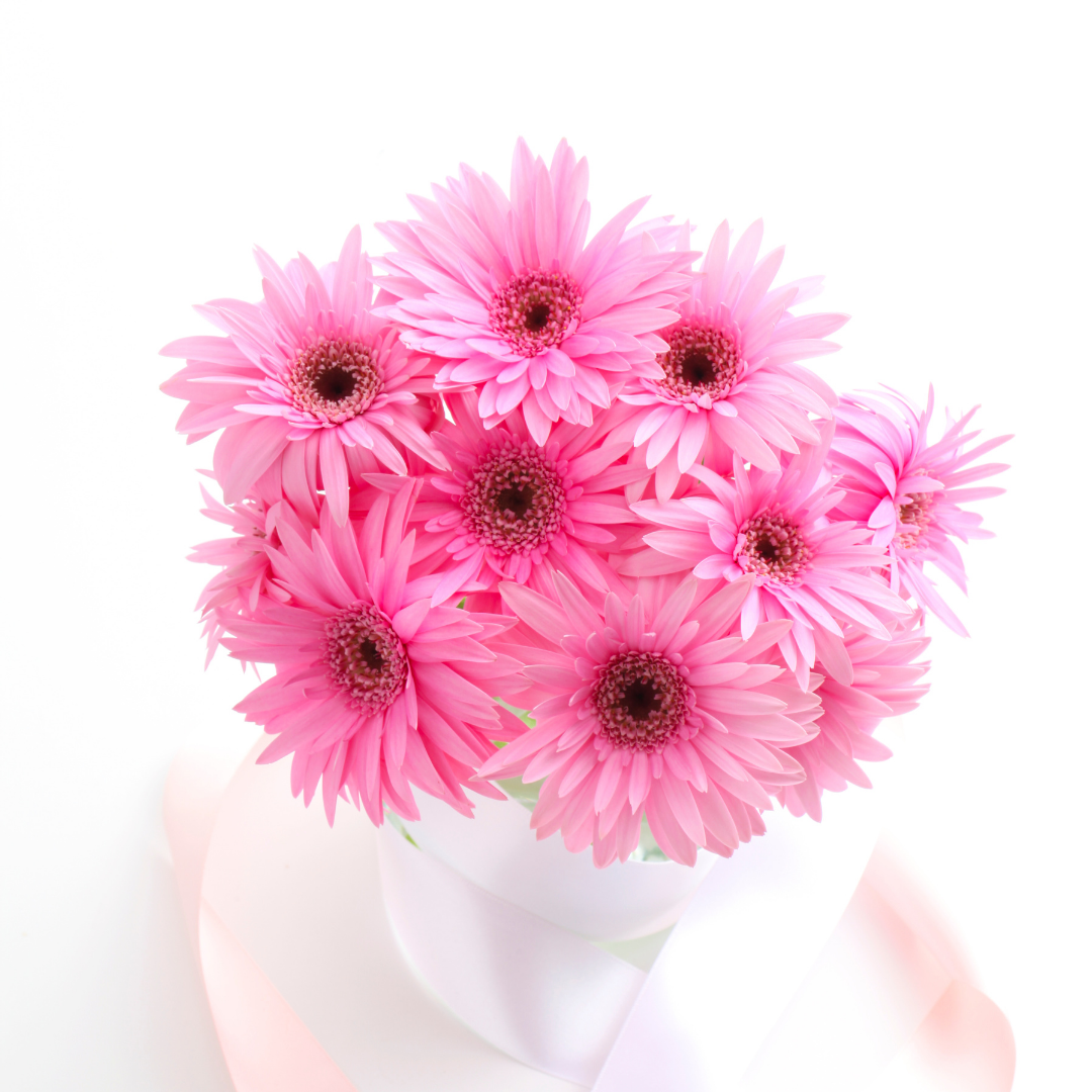 gerbera lilies flowers for mothers day philippines